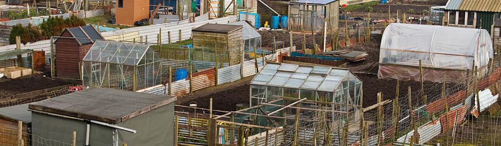 Entstehung von Urban Gardening