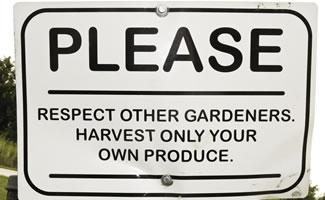 Urban Gardening -Initiativen