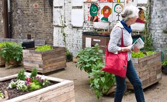 wo wird urban Gardening betrieben?